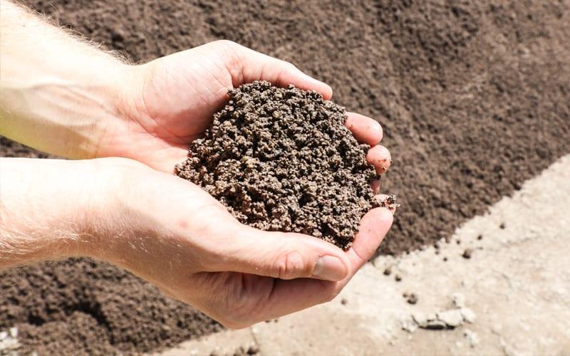 rilite-aggregates-sand-in-hand